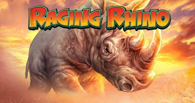 raging-rhino wms
